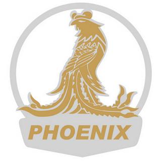 PHOENIX 凤凰 儿童三轮脚踏车