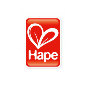 Hape 游戏盒绕珠串珠系列 E1810 开心农场游戏盒