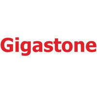 Gigastone/立达