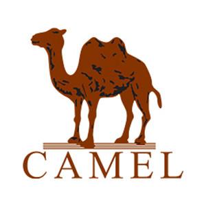 CAMEL 骆驼 儿童加绒加厚抓绒衣 宝蓝 140cm