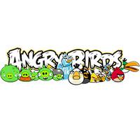 angry birds/愤怒的小鸟