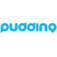 pudding/布丁家庭机器人