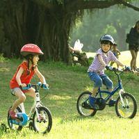 DECATHLON 迪卡侬 儿童自行车 14寸
