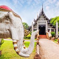 出游必备:泰国签证 北上广送签/电子签 过关不排队!