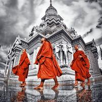 玩遍经典!柬埔寨暹粒包车 1-3天 (多线路/车型可选)