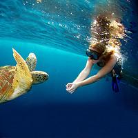去海边:斯米兰10月15日开岛!普吉岛-斯米兰一日游