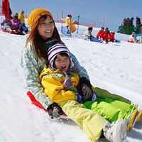 当地玩乐:冬季限定!日本大阪/京都-琵琶湖谷/箱馆山滑雪一日游(巴士往返)