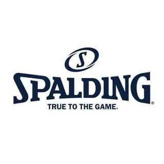 斯伯丁(SPALDING) 便携式打气筒带球针篮足球类气筒体育用品配件 送延长软管 8323CN