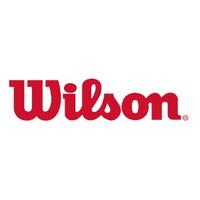 威尔胜 Wilson