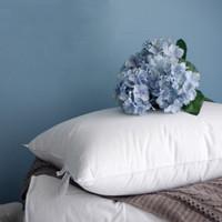 专题:带给你温馨的睡眠——好口碑枕头选购指南