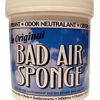 BAD AIR SPONGE Odor Neutralizer 空气净化剂 400g