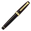 SAILOR 写乐 11-2036 21k大型平顶双色尖钢笔