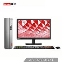 Lenovo 联想 天逸 310S 电脑整机 19.5英寸 (AMD、4G、1T)