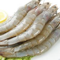 聚天鲜 厄瓜多尔白虾 净重1.5Kg(60-70只)