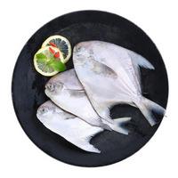 三都港 东海银鲳 平鱼 深海鱼 450g 3条 *6件
