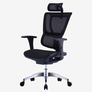 保友Ergonor电脑椅 联友人体工学椅子 优/ioo高配版 办公网椅黑色