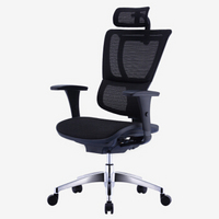 Ergonor 保友办公家具 人体工学椅 优B高配版 无躺舒宝