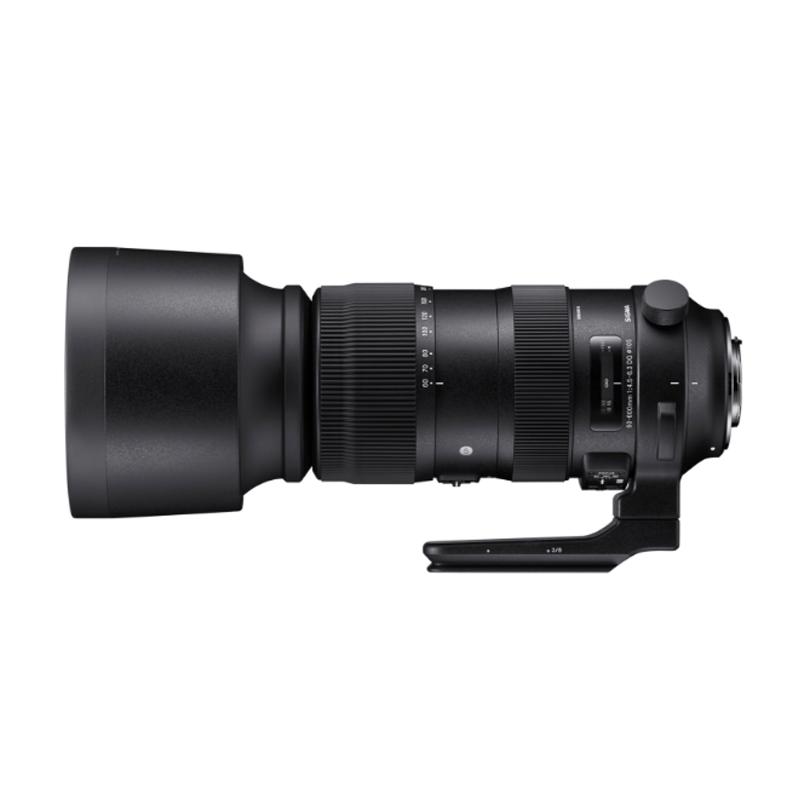 SIGMA 适马 60-600mm F4.5-6.3 DG OS HSM Sports 大变焦镜头 佳能卡口