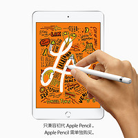 Apple 苹果 iPad mini (64GB)