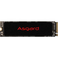 Asgard 阿斯加特 AN2系列-极速版 NVMe M.2 固态硬盘 1TB