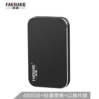 梵想(FANXIANG)480GB Type-C USB3.1移动硬盘 固态(PSSD)P101黑色 8mm超薄小巧