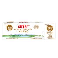 百菲酪 纯牛奶200ml*20盒装