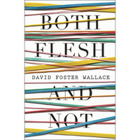 Both Flesh and Not: Essays 英文原版