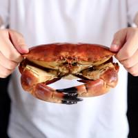 【鲜活】味库 英国进口鲜活面包蟹 600-800g/只 大螃蟹 海鲜水产