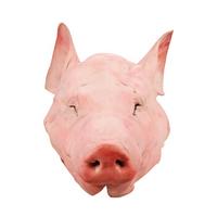 精气神 带耳黑猪猪头  5kg