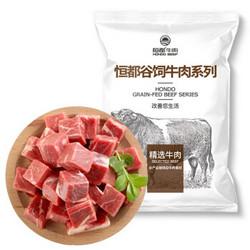 HONDO BEEF 恒都牛肉 国产原切牛肉块  1kg