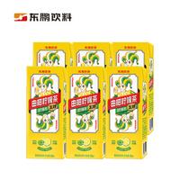 DONGPENG 东鹏 由柑柠檬茶 250ML*6盒 *21件