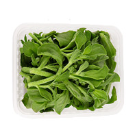 芬果时光 新鲜冰草菜水晶菜  1.5斤