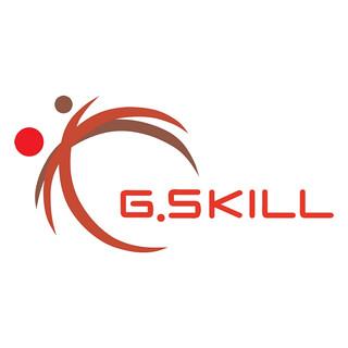 G.SKILL/芝奇