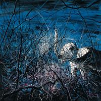 中国嘉德 曾梵志 太平有象 200×200cm 布面油画 2007