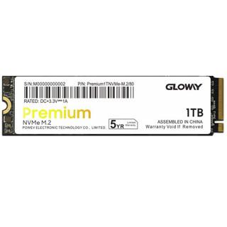 GW 光威 Gloway)1TB SSD固态硬盘 M.2接口(NVMe协议) Premium系列-高级版/五年质保