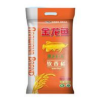 金龙鱼 软香稻大米 5kg
